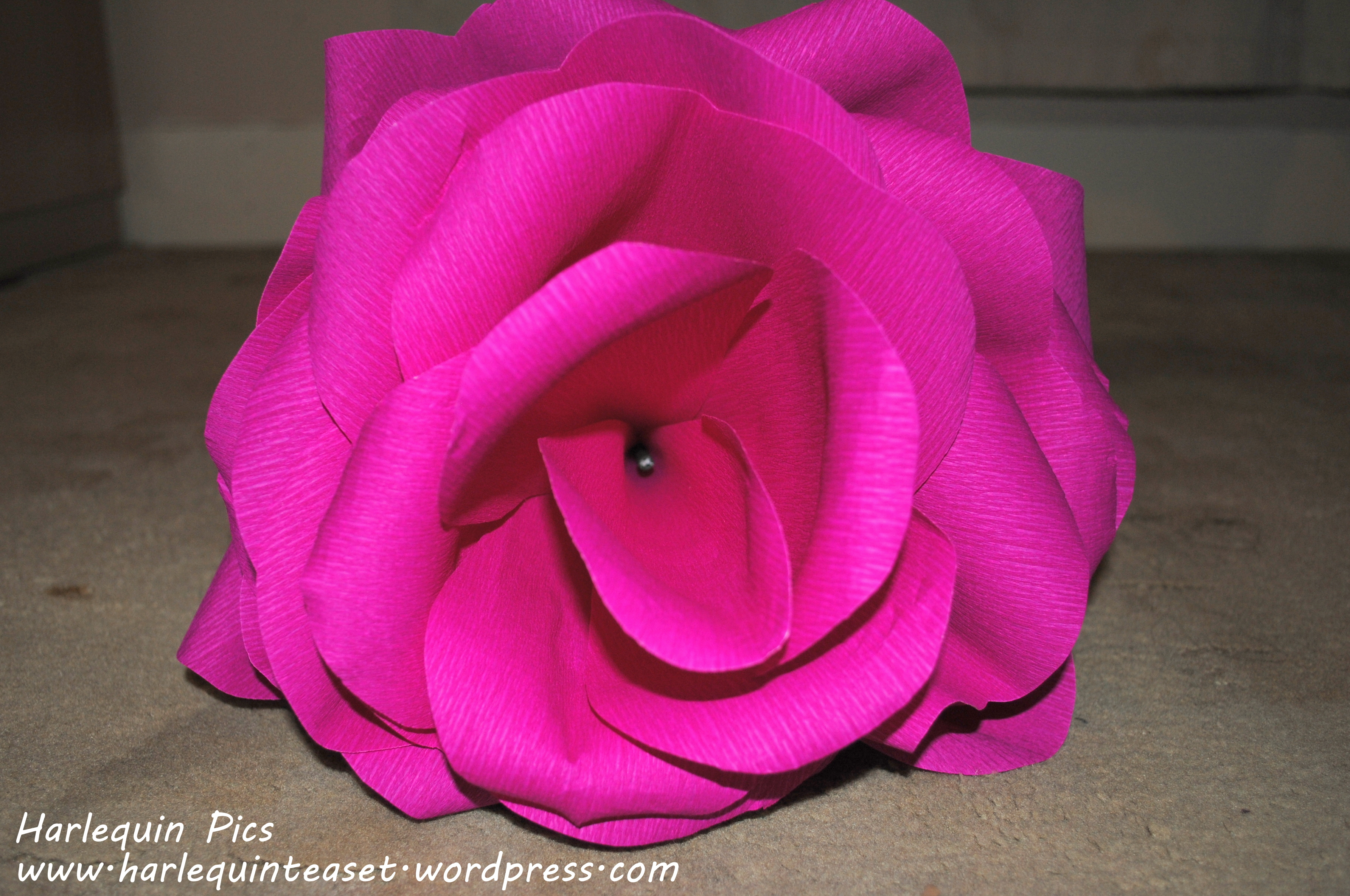 Giant Paper Flowers A Tutorial The Harlequin Tea Set