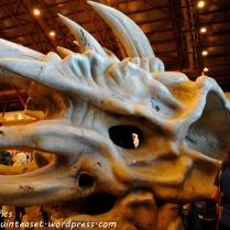 A Skull. I'm not really sure.