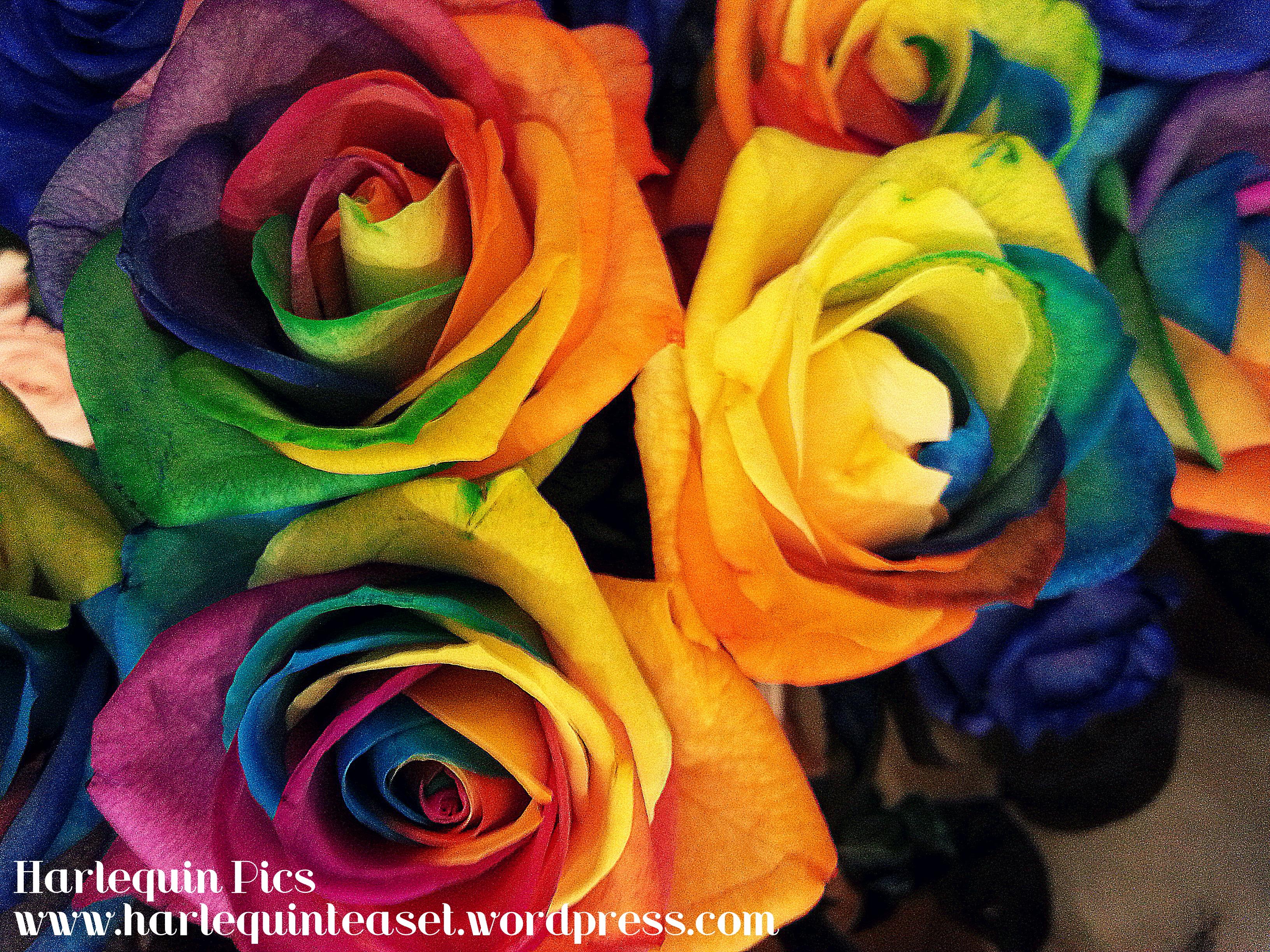 Weekend Pretty Rainbow Roses The Harlequin Tea Set