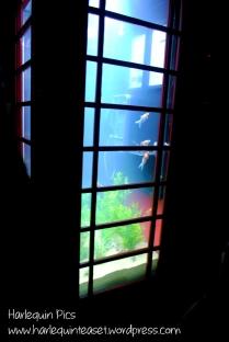 Aquarium by Benedetto Bufalino & Benoit Deseille